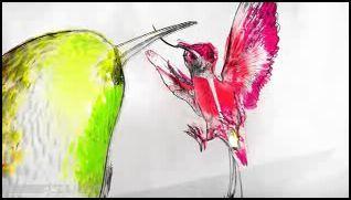 Motley_bird_3